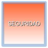 ICM-SEGURIDAD